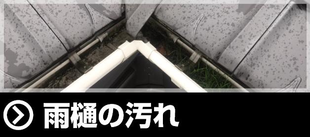 雨樋の汚れ