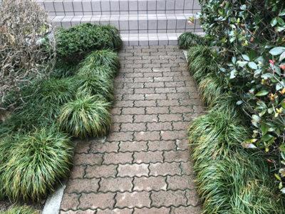 新潟県村上市 アプローチ床 エコロビーム洗浄 施工後